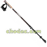 Nordic walking hole Leki Traveller Carbon